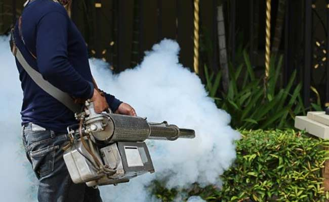 What to Consider When Buying Pest Control Products