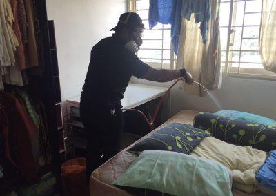 Aerohub Pest Control Bedbugs_2